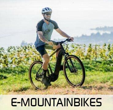 E-Mountainbike kaufen