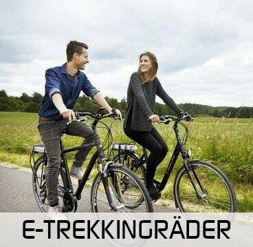 Trekking E-Bike kaufen