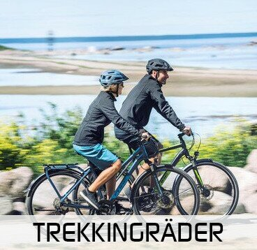 Trekkingrad kaufen